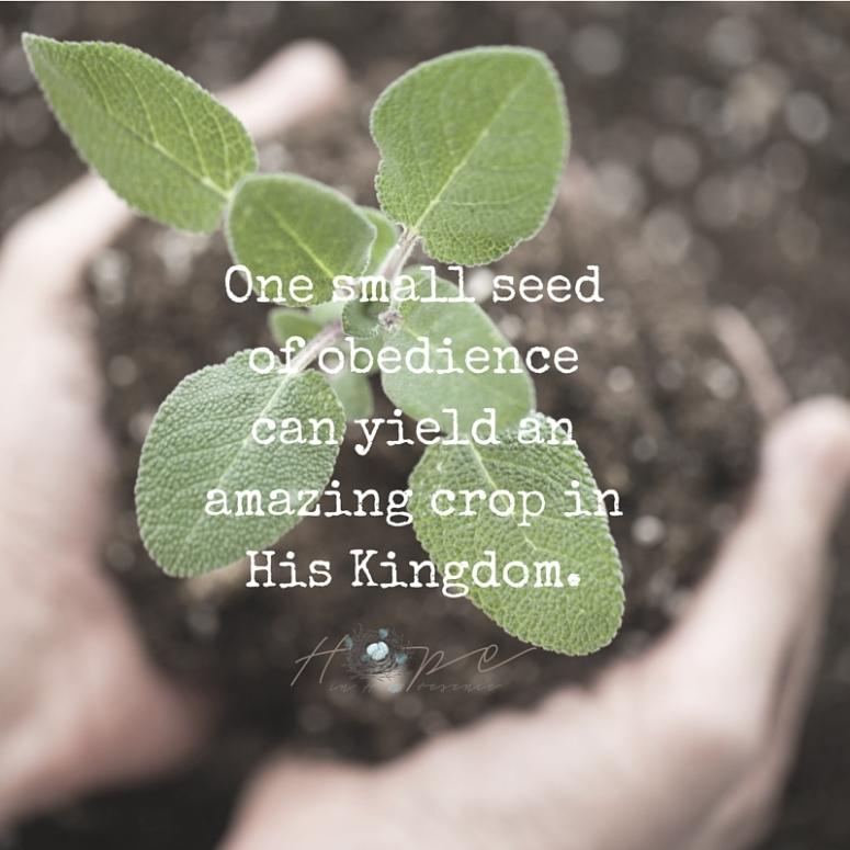 A seed ofobediencecan yieldan amazingcrop inHis Kingdom.