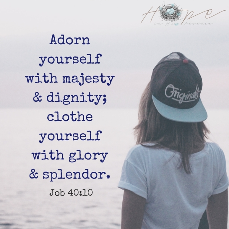 Adorn yourself with majesty & dignity; clothe yourself with glory& splendor.