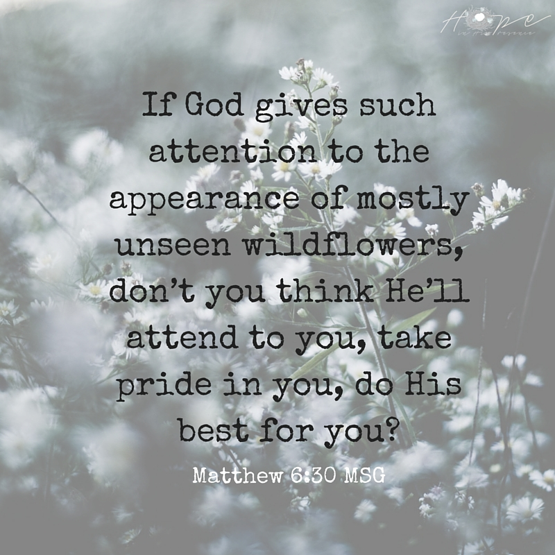 If God gives such attention to the appearance of wildflowers—most of which are never even seen—don't you think he'll att