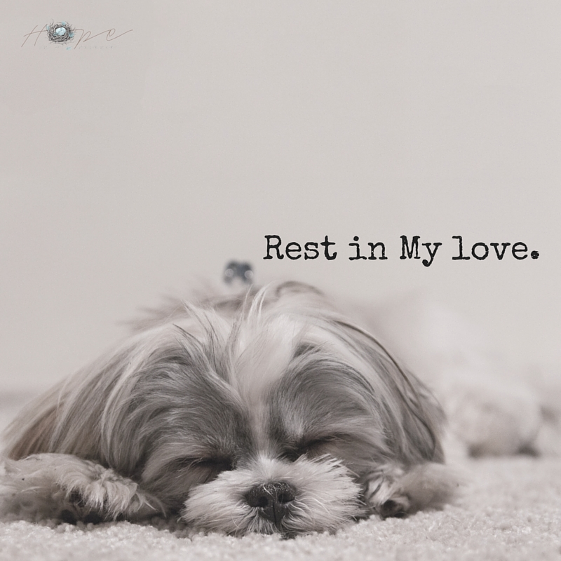 Rest in My love.