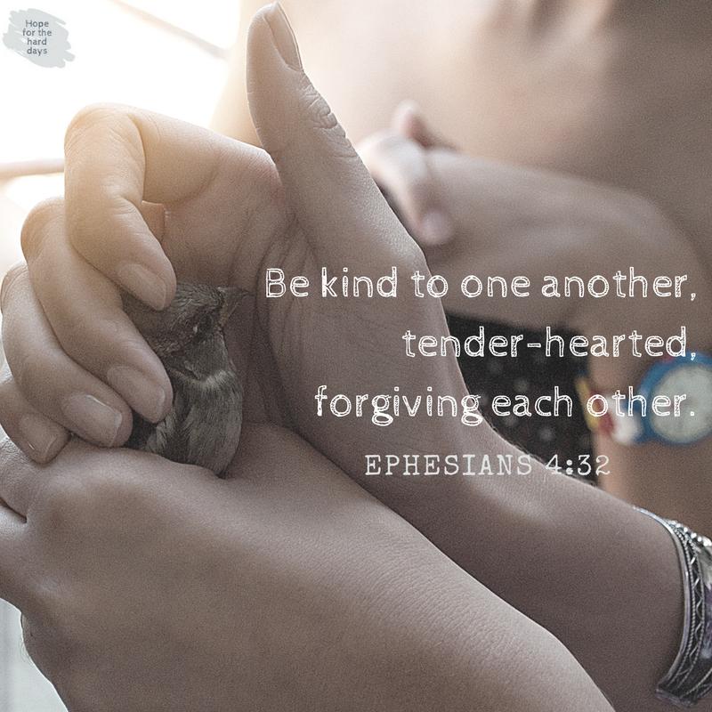 Ephesians 4_32 kind forgive